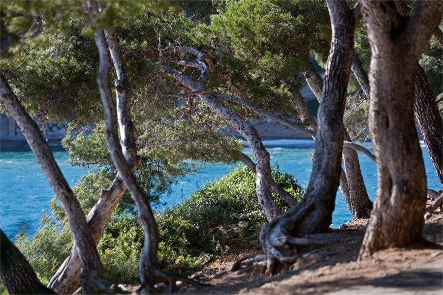 Presqu'île du Cap Ferrat