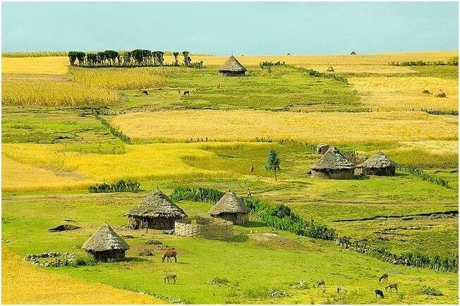 11 Days UNESCO World Heritage Sites of Ethiopia Tour