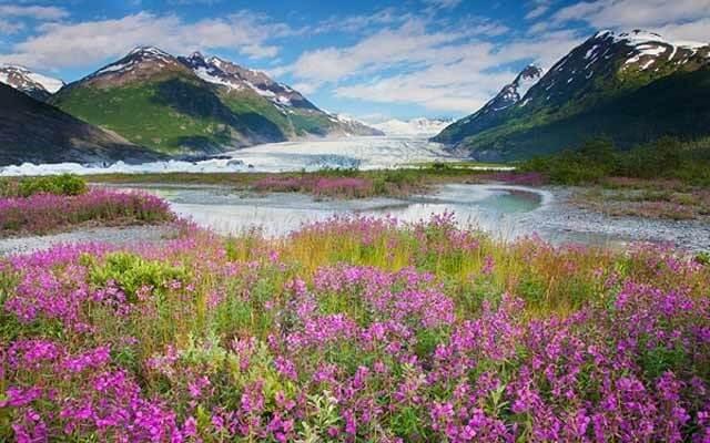 10 Days hiking in Alaska
