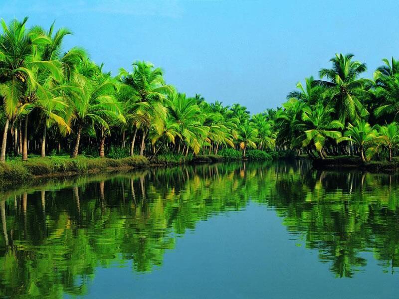 """Best of Kerala"" Tour"