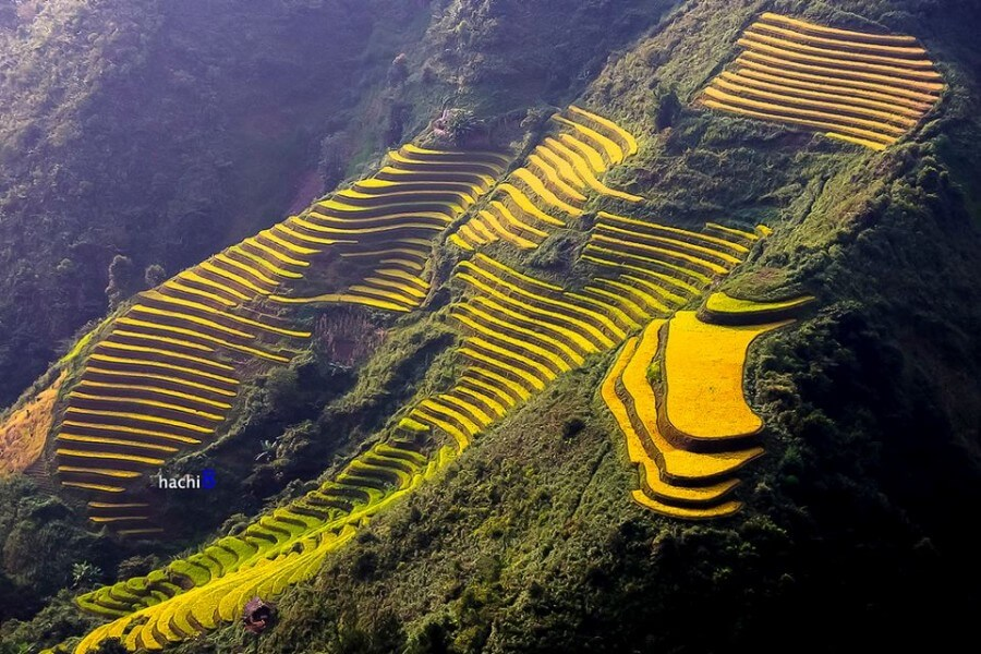 BEST OF NORTH VIETNAM