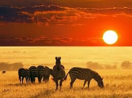 5 DAYS AMBOSELI  & TSAVO WEST NATIONAL PARKS SAFARI