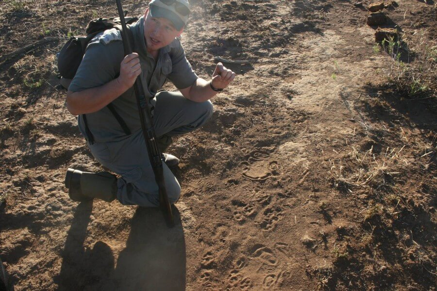 3 Day Pilanesberg Safari & Bushwalk