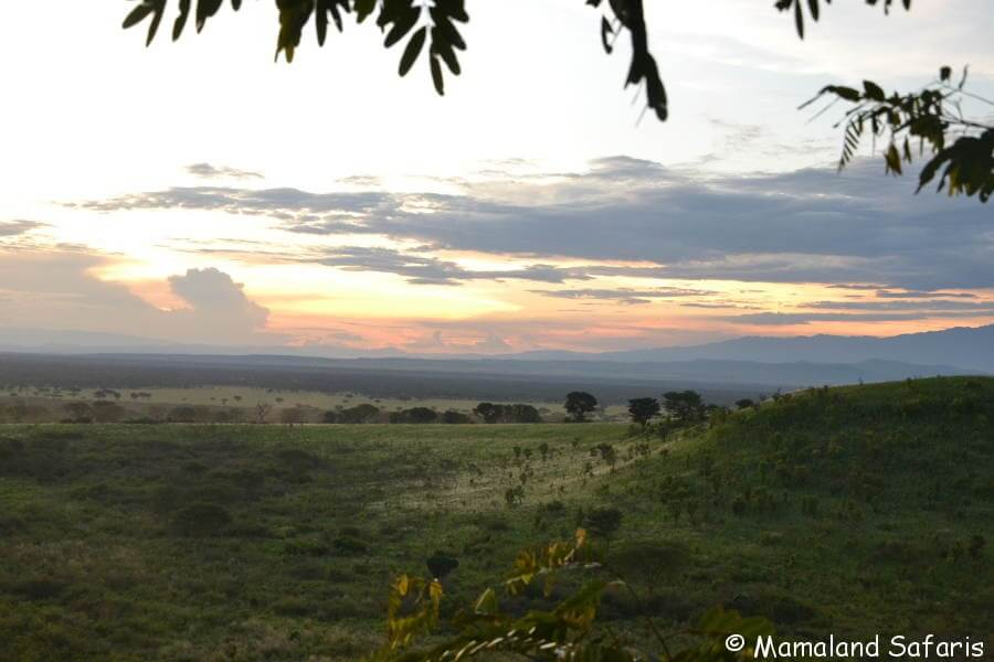 Explore Queen Elizabeth NP safari - Uganda