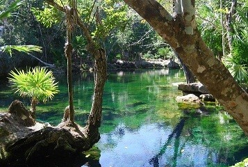 Cenote and Bicycle