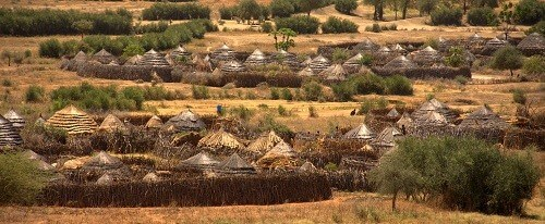 7 Days Kidepo Valley N.P & Karamojong Culture