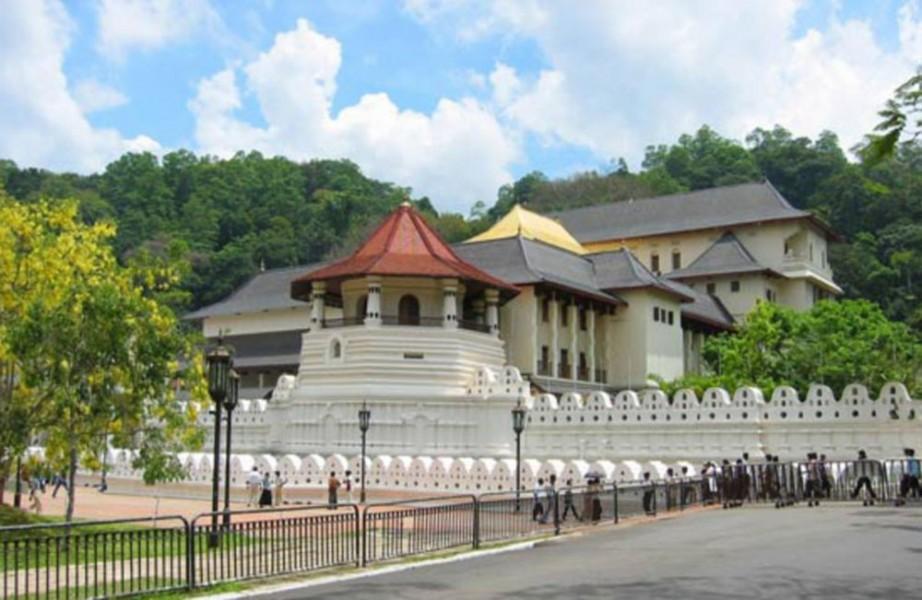 10 Days Serendib Tour Sri Lanka