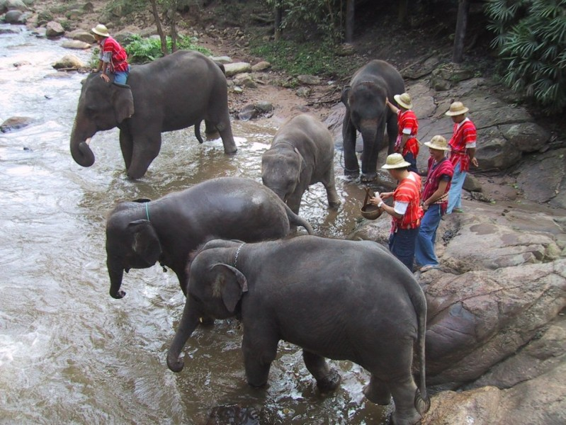 5-Day Secrets of the Golden Triangle (from Chiang Mai)