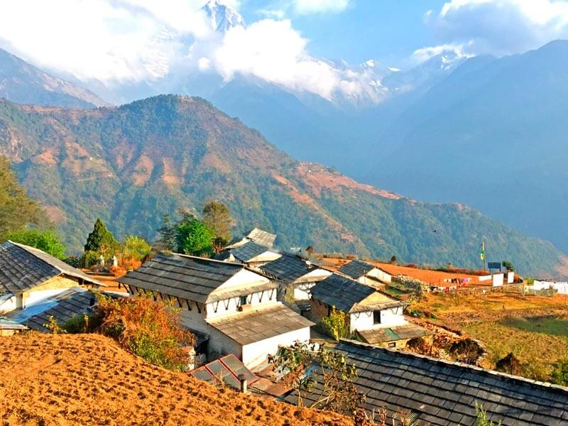 Tadapani- Ghandruk (2675m)