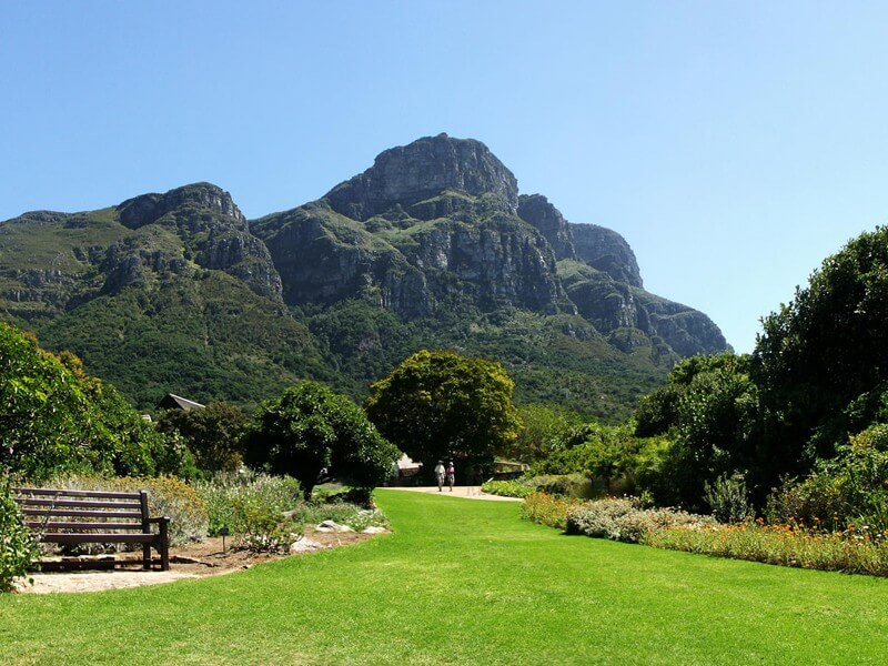 T3: Cape Town, Route 62, Garden Route & Winelands
