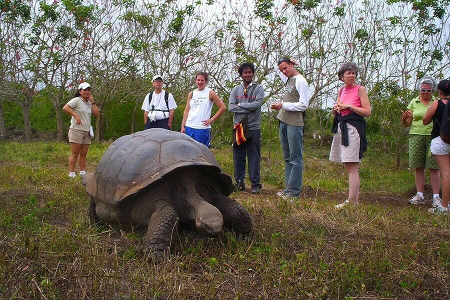 6 Days Galapagos Adventure Land Tour