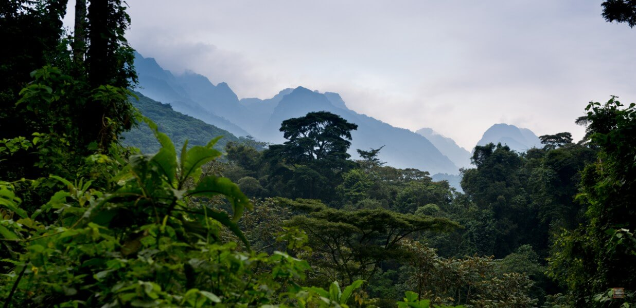 Rwenzori with Mt. Margherita