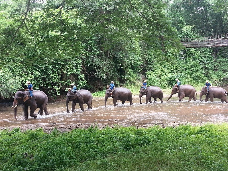 Discover Central and Northern Thailand 14 days