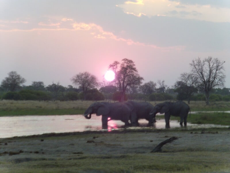EASY NATURE IN BOTSWANA