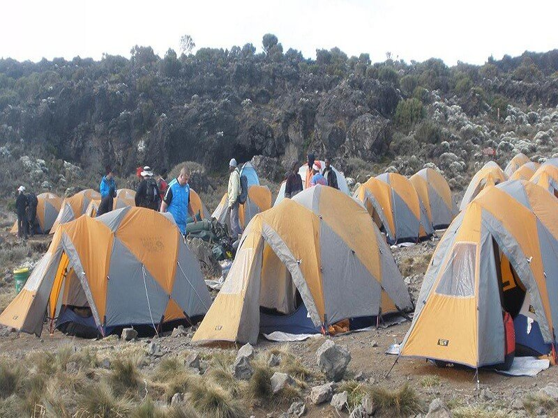 8 Days Lemosho Route Mt.Kilimanjaro Climb
