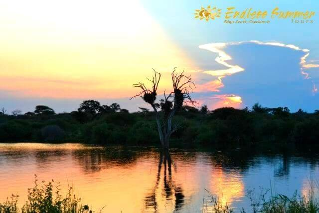4 Day Safari Inside the Kruger Park