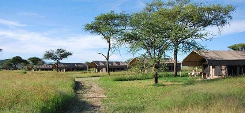 4 DAY LODGE AND CAMPING BASED SAFARIS