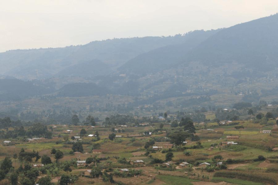 Kidepo & Murchison Falls safari - 8 days