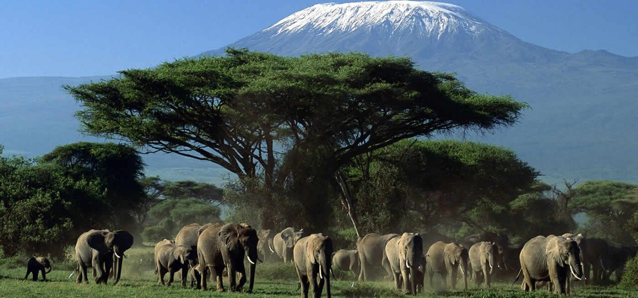 3 Days Amboseli Adventure Safari