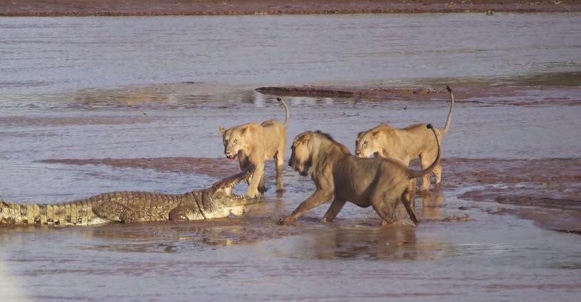 Samburu Natiinal Reserve