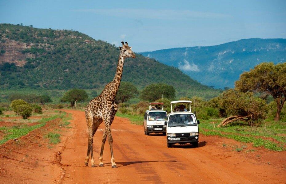Kenya in Style Safari
