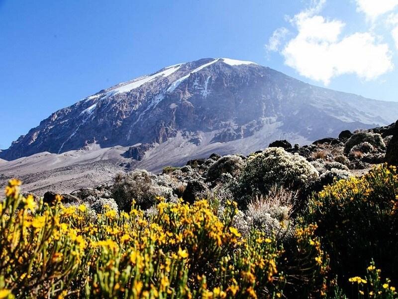 7 Days Ronagi route trekking Mt.Kilimanjaro