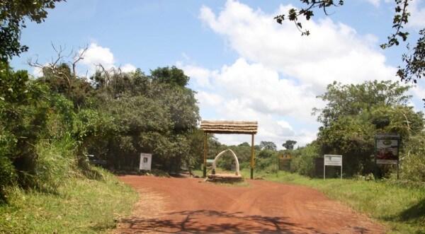 11 Days Uganda Special