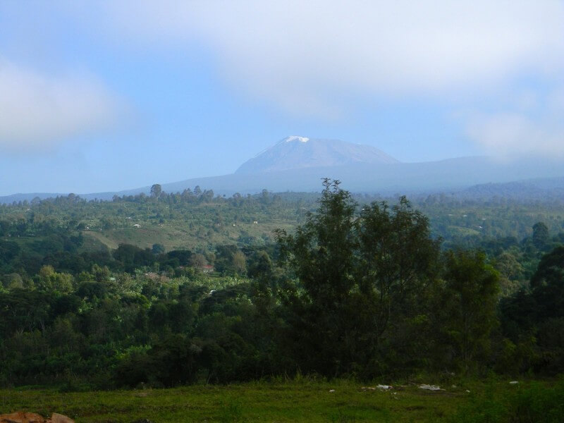 Mountain Kilimanjaro Day Hike