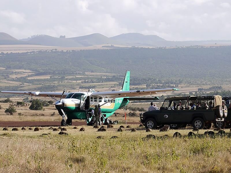 10 Days Masai Mara Serengeti - Ngorongoro Flight Safari