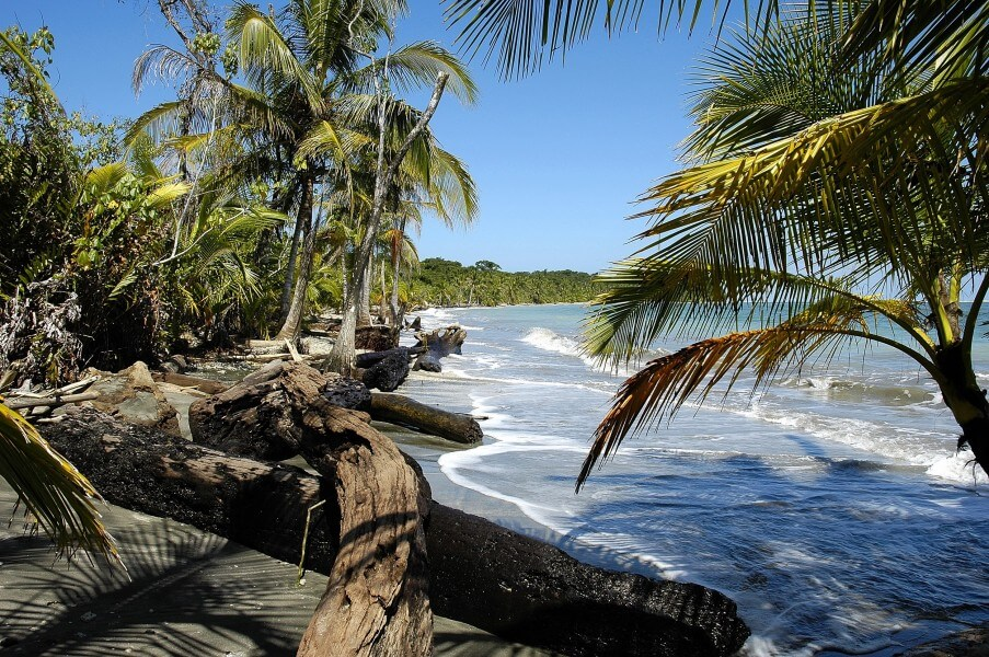 SOUTHERN COSTA RICA & CORCOVADO NATIONAL PARK