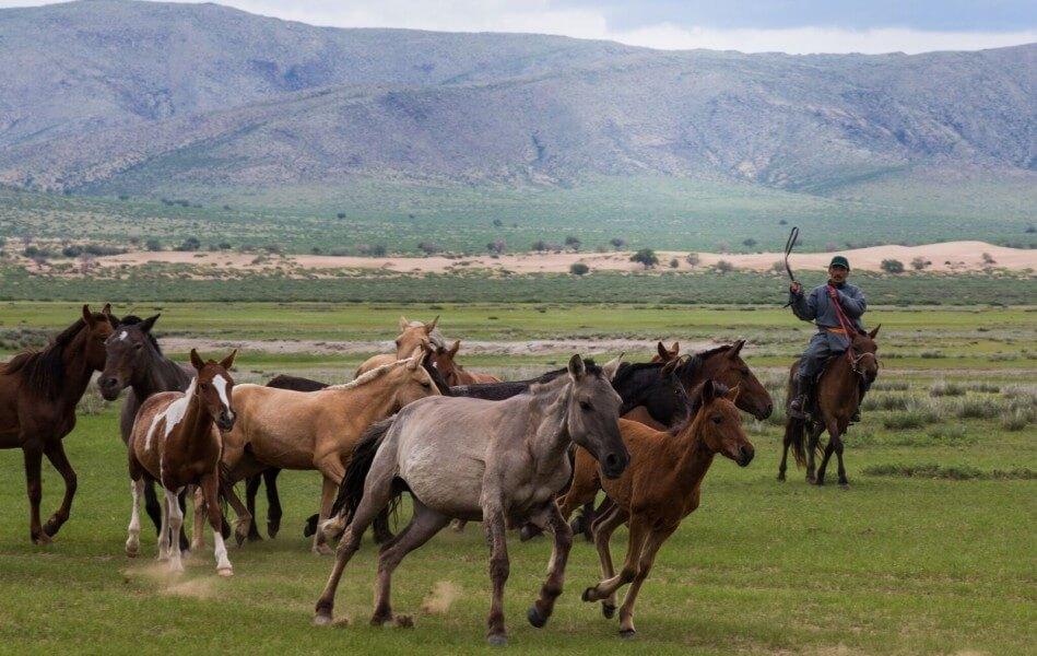 Epic Mongolian style
