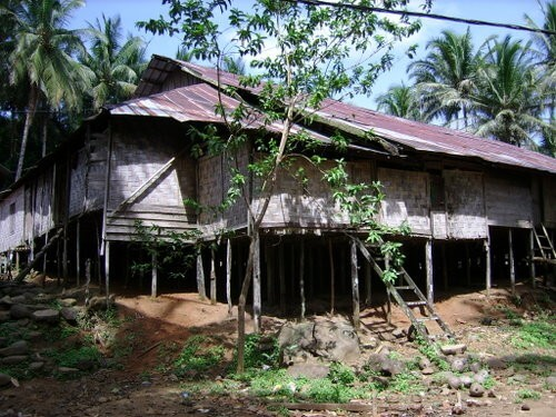Dayak Village & Surrounding
