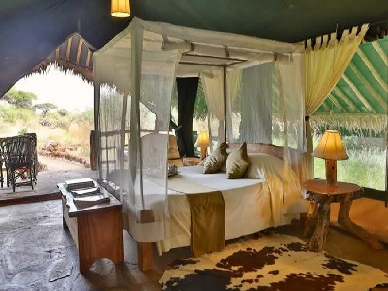 6 Days Amboseli, Lake Nakuru and Masai Mara Tour
