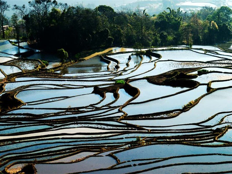 4 Days Rice Terraces Photography Tour