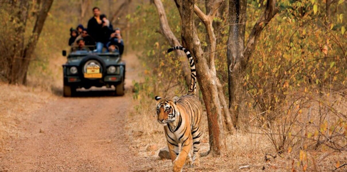 Golden Triangle With Ranthambore – 08Nights / 09Days