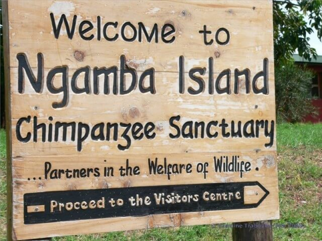 6 Days Uganda Gorillas & Batwa Pygmy Experience