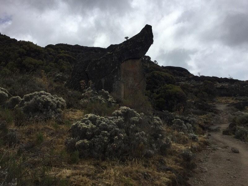 Mount Kilimanjaro Climbing via Northern Circuit 11 Days