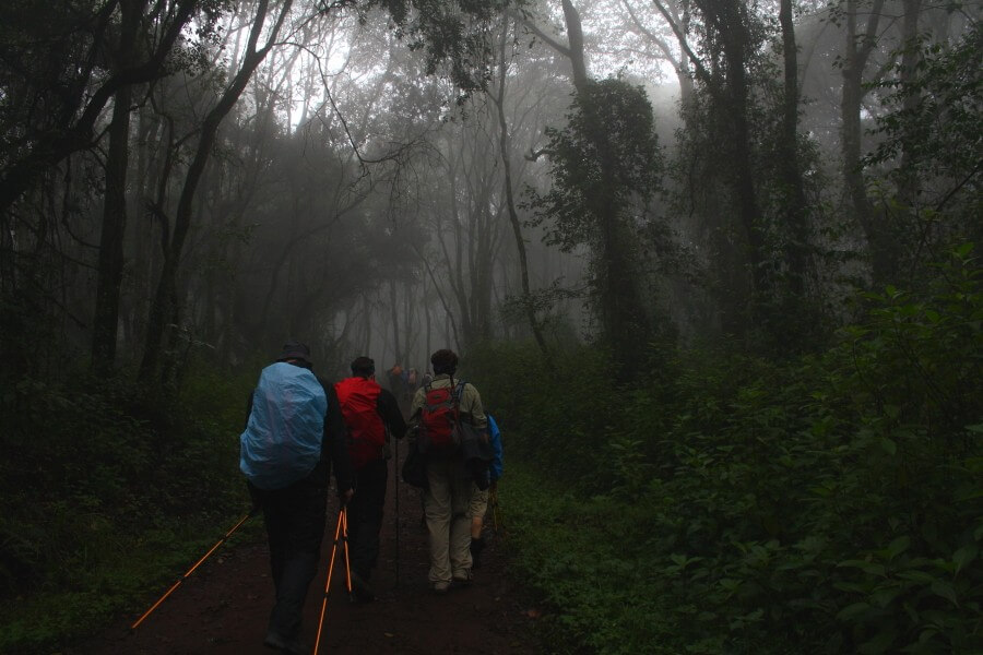 7 Days Machame route staying at crater Camp Mt.Kilimanjaro
