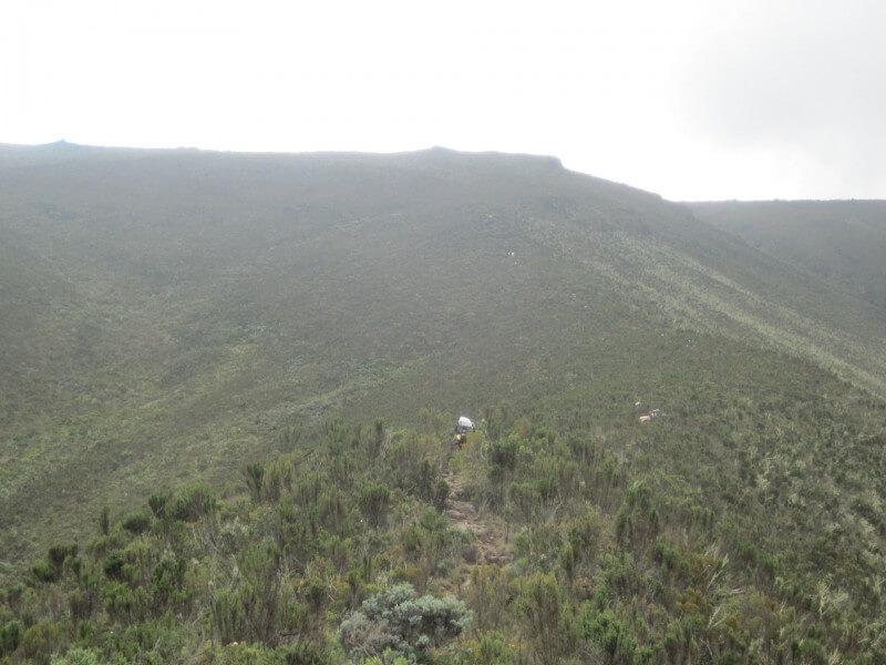 7 - Days Kilimanjaro Machame route