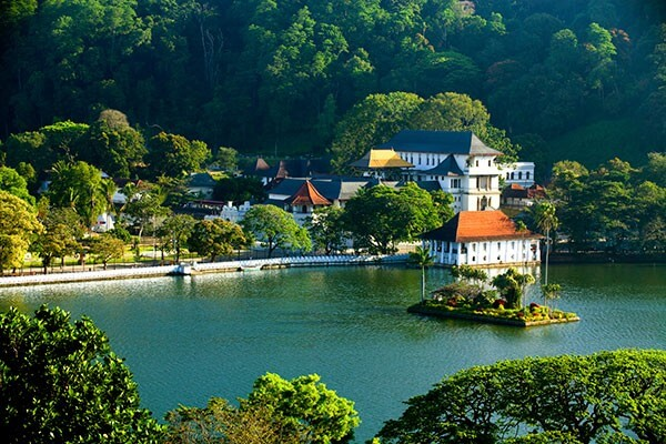 MATALE TO/ KANDY TOUR