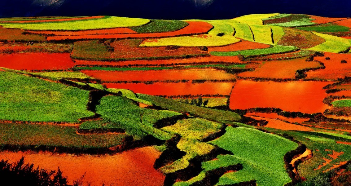 Yuangyang Terraces and Dongchuan Red Land (10 days)