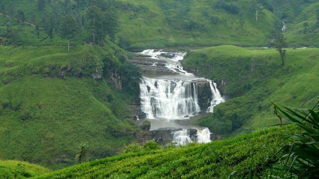 TEA PLANTATIONS /WATER FALLS