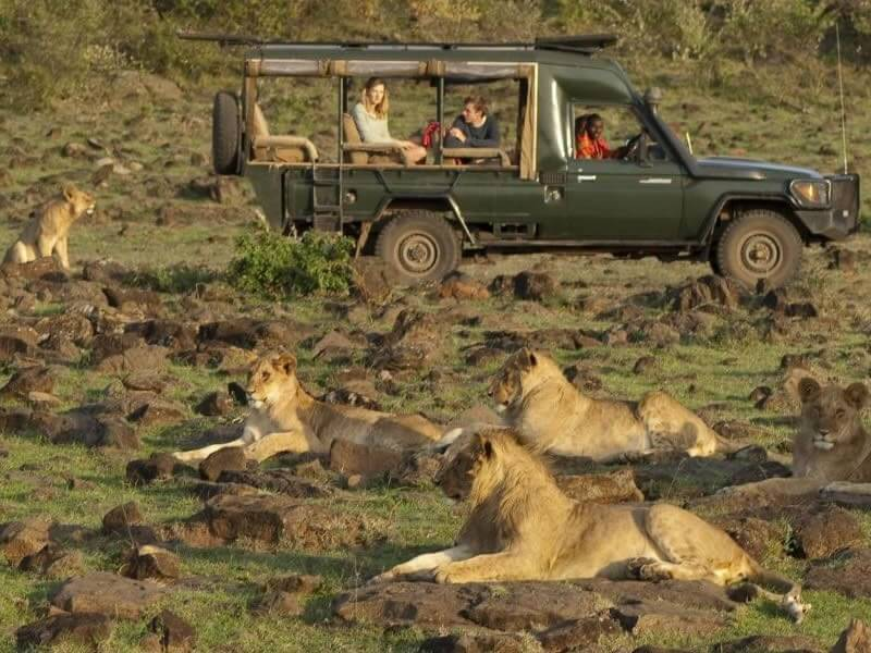 5 Days Cottar's Camp Masai Mara Honeymoon Trip