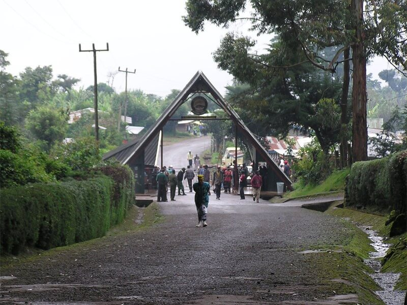 Marangu Gate-Mandara Hut