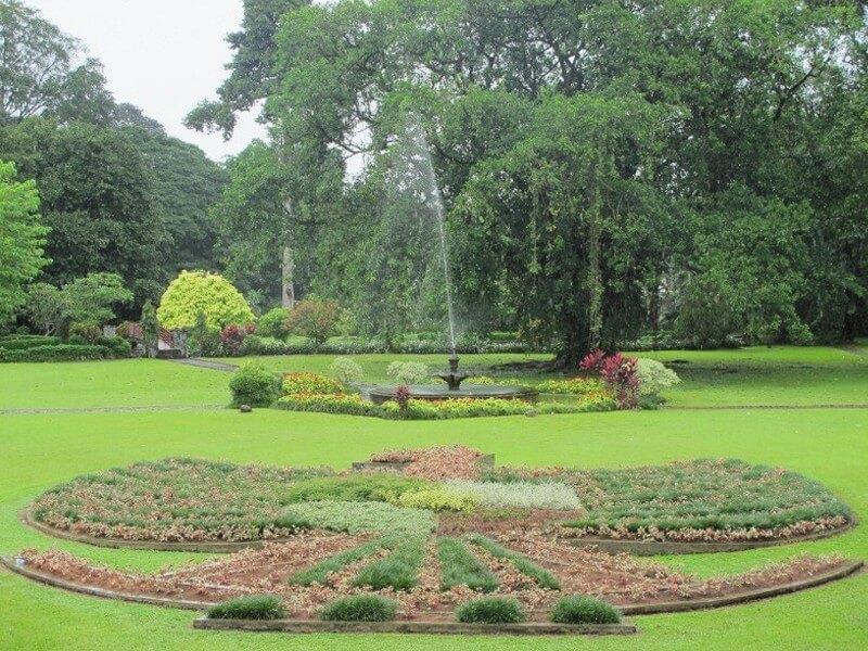Botanical Garden Bogor