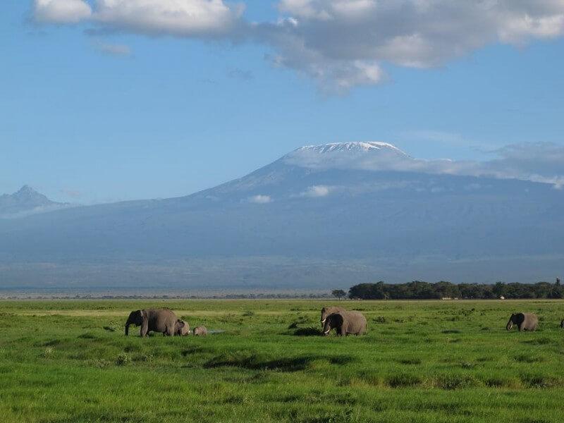 6 Days Amboseli-Lk. Naivasha-Masai Mara