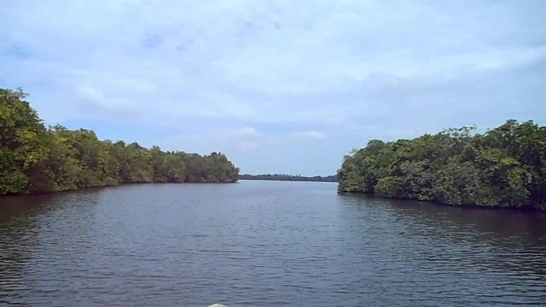 Galle Fort & Lagoon Safari