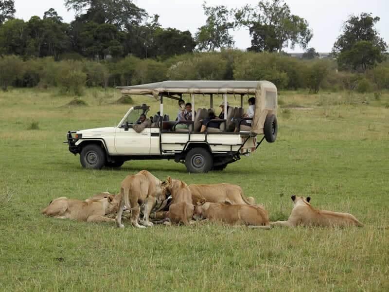10 Days Lewa - Samburu - Masai Mara Kenya Safari