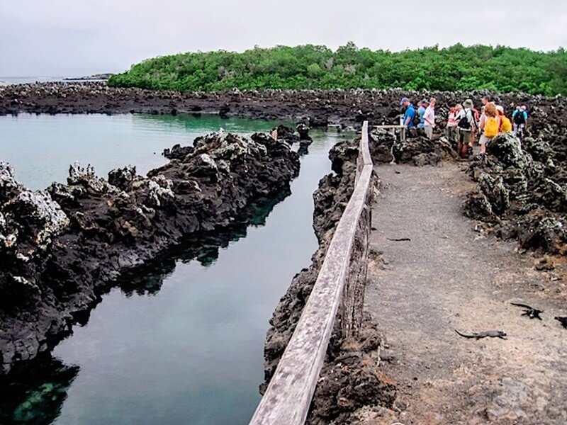 6 Days Galapagos Travel Land Tour - Isabela & Santa Cruz + 1 Navigable Island