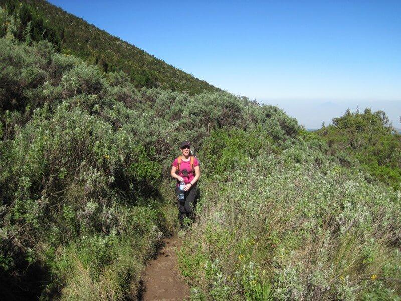6 - Days Kilimanjaro Rongai route